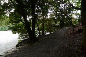 御遷座当日の早朝、関係者以外立入禁止が解除されていた大水神社(皇大神宮 摂社)への参道