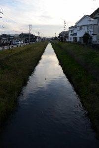 先日見つけた暗渠からの流れ(桧尻川)