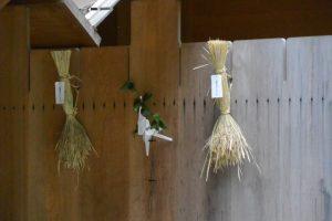 神嘗祭、風日祈宮の瑞垣に掛けられた「伊勢神宮カケチカラ会」初穂の稲束