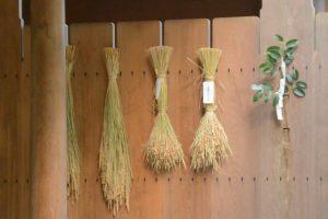 神嘗祭、多賀宮の瑞垣に掛けられた「伊勢神宮カケチカラ会」初穂の稲束