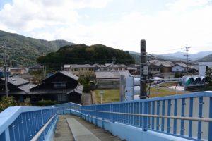 中村歩道橋(国道23号線)から望む興玉の森(宇治山田神社の社叢)