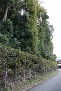 宇治山田神社(皇大神宮 摂社)付近