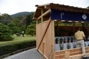 松の剪定作業と菊花の奉納展示の準備(内宮神苑)