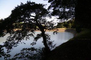 阿射加神社付近の池(松阪市大阿坂町)