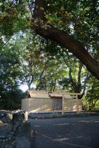 大修繕を終え、覆屋が取り外された大間国生神社(豊受大神宮 摂社)