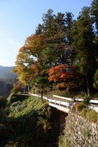 紅葉の波瀬神社(松阪市飯高町波瀬)