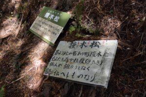 撞木松の説明板、伊勢南街道(小峠〜杉谷登山口)