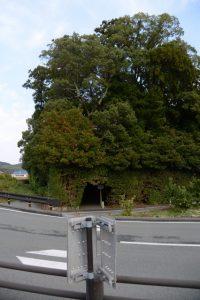大土御祖神社・国津御祖神社(皇大神宮 摂社)
