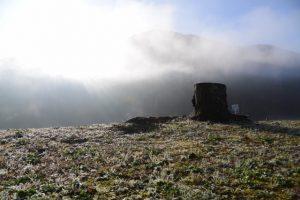 宮リバー度会パークから眺めた朝霧