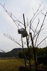立岡城跡付近に奉られていた二見興玉神社の神札