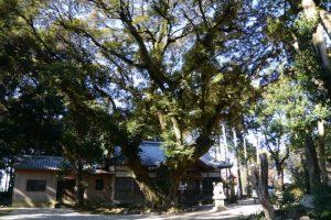 阿自賀神社(鈴鹿市安塚町)