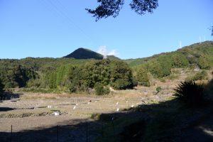 神内神社(子安の宮)付近の風景(南牟婁郡紀宝町神内)