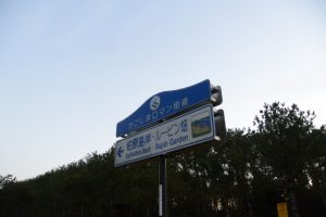 [かごしまロマン街道]および[←柏原海岸・ルーピン畑]の標識