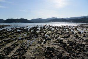 青島神社の周囲に広がる鬼の洗濯板(青島の隆起海床と奇形波蝕痕、波状岩)