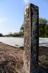 史蹟 唐仁古墳群の石柱(鹿児島県肝属郡東串良町新川西)