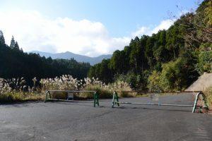 舗装された道を権現山へ