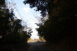 権現山駐車場(鹿児島県肝属郡肝付町波見)
