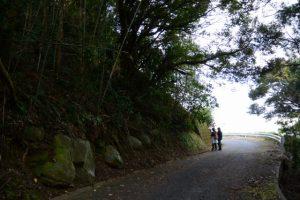 林道赤迫柳井谷線
