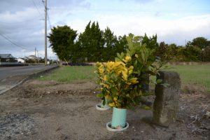 大束神社の社号標、国道448号沿い