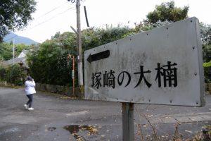 塚崎の大楠(塚崎古墳群 第1号墳)への案内板