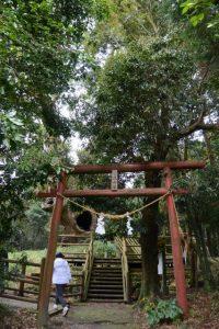 大塚神社の扁額が掛けられた鳥居(塚崎古墳群 第1号墳)