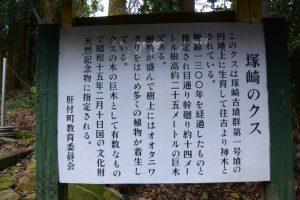 「塚崎のクス」の説明板