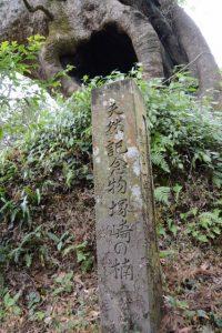 天然記念物塚崎の楠の石柱
