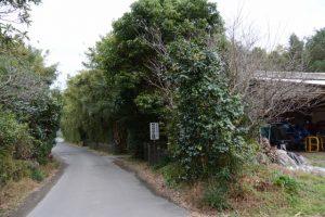 新川西[下伊倉]の田の神(東串良町)