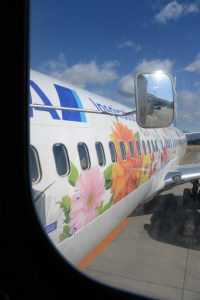 搭乗した飛行機 東北FLOWER JET(鹿児島空港にて)