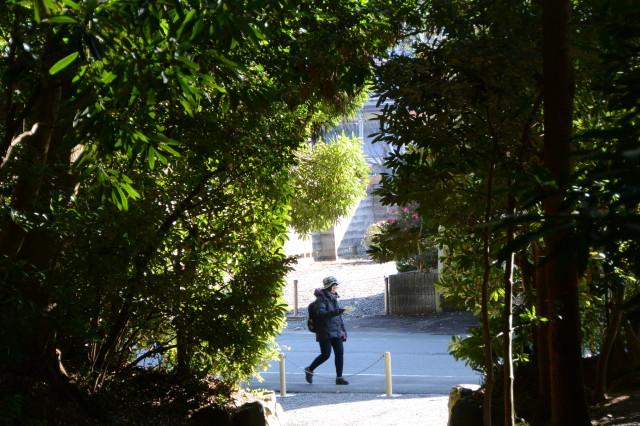 度会大国玉比賣神社(豊受大神宮 摂社)付近から参道入口の遠望