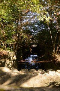 勾玉池から流れ出す豊川の流れ