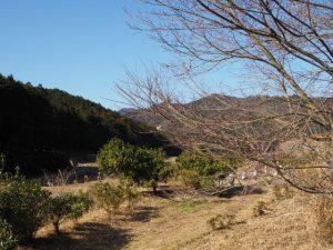 南中村(あすなろ)公園(度会町南中村)