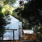 大修繕のために覆屋が掛けられた蚊野神社(皇大神宮 摂社)と仮殿