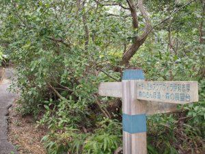登茂山への道標(ともやま園地)