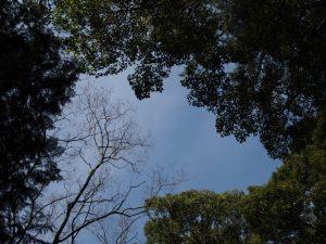 御塩殿神社(皇大神宮 所管社)にてオミアゲ写真