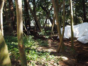 作業道を下る女性、蚊野神社(皇大神宮 摂社