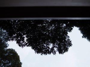 オミアゲ写真、蚊野神社(皇大神宮 摂社)