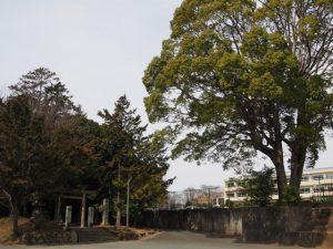 東外城田神社(度会郡玉城町蚊野)