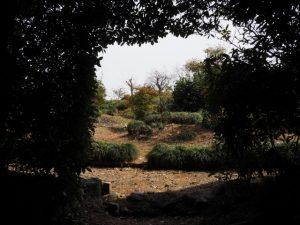 田乃家神社(皇大神宮 摂社)、田乃家御前神社(同)を同座