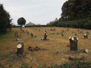 鴨下神社(皇大神宮 末社)付近