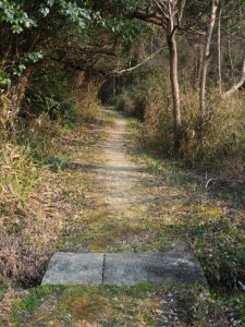 神前神社(皇大神宮 摂社)の参道へ