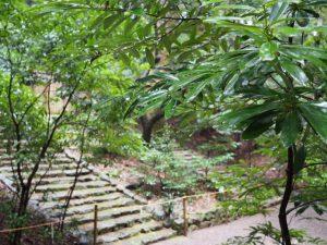 度会大国玉比賣神社(豊受大神宮摂社)への石階