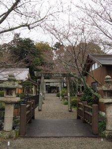 お気に入りの桜の名所もまだつぼみ、有田神社(伊勢市小俣町湯田)