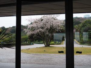 タラサ志摩ホテル&リゾートの周辺散策
