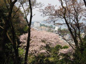 音成神社〜吊り橋(音無山)