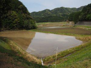 エンゲの切り通し〜岩谷池(立梅用水)にての眺望