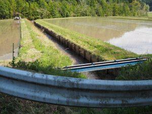 立梅用水から分岐する排水路