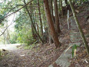 岩谷池の畔の手摺と階段(多気町丹生)