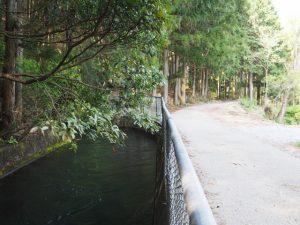 立梅隧道出口付近(立梅用水)