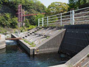 立梅用水の四代目井堰の取水口(櫛田川)